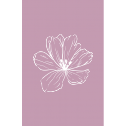 Flower faded pink |...