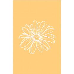 Flower faded yellow |...